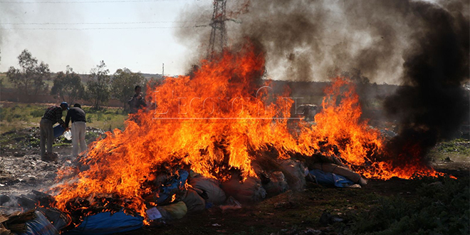 Dakhla: 14 tonnes de drogue incinérées