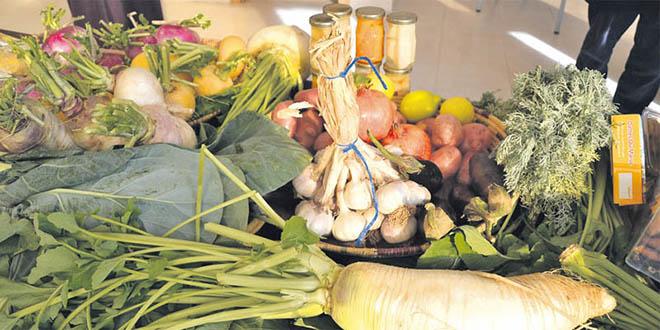 FAO : La cohérence des politiques sectorielles pour une agriculture durable au Maroc
