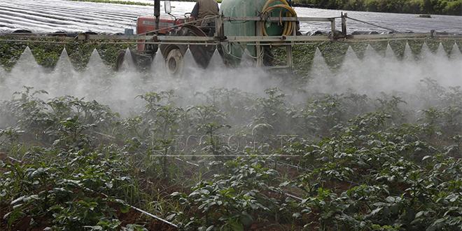 Rabat-Salé-Kénitra : 3,1 milliards de DH pour l'investissement agricole