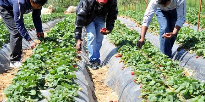 Petits agriculteurs : Les premières mesures