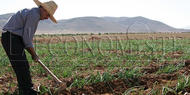 L'agriculture performe, l'industrie décélère
