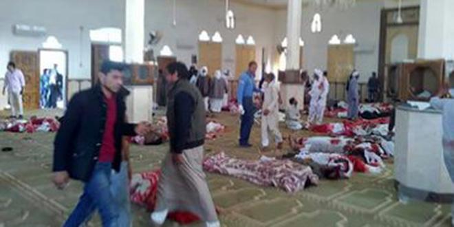 Attentat en Egypte: une boucherie à Sinai