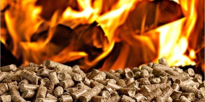 Une feuille de route pour la valorisation énergétique de la biomasse