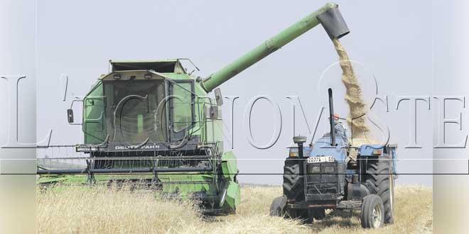 Campagne agricole : 500.000 T d'engrais sur le marché