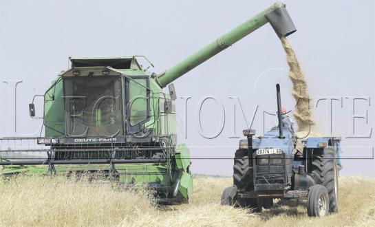 Campagne agricole : Des records attendus cette année