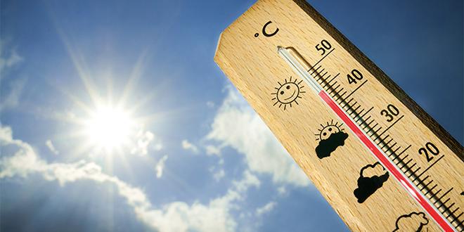 Le thermomètre frôle les 50° C dans certaines régions