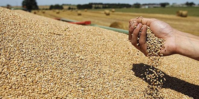 Les négociants en céréales créent leur Think Tank