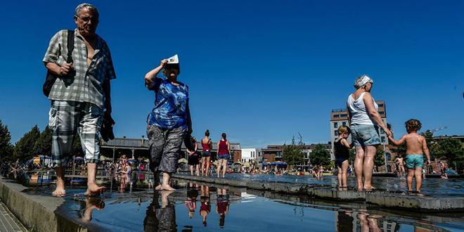 2016, l'année la plus chaude en 137 ans