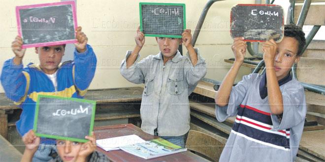Primaire:Un nouveau projet de curriculum de la langue amazighe élaboré