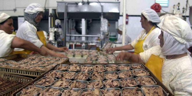 Safi: 300 millions de DH pour une conserverie de poissons