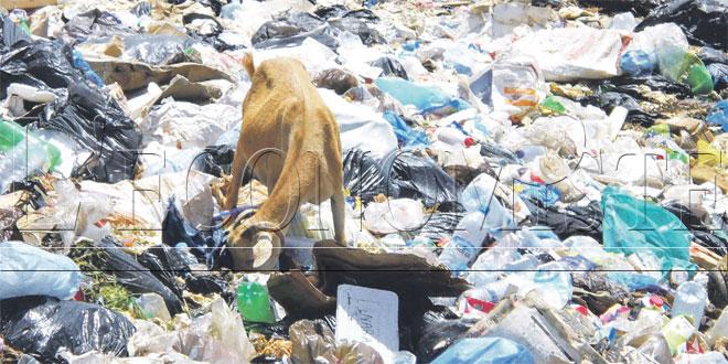 Valorisation des déchets: Le Maroc doit mieux faire