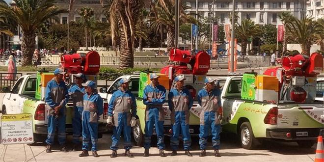 "Grosse opération ""Dératisation"" à Casablanca"