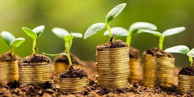 Entreprenariat vert: MITC et le Cluster solaire coopèrent