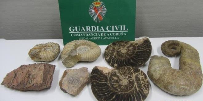 Espagne: Saisie de fossiles provenant du Maroc