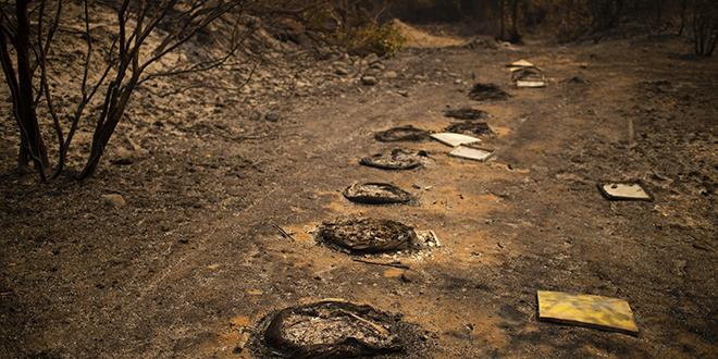 Grèce : les incendies finalement sous contrôle