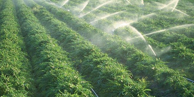 Irrigation : Nouveau prêt de la BAD