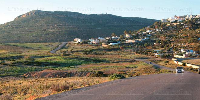 Jebha: 1.200 hectares de plus pour l'arboriculture