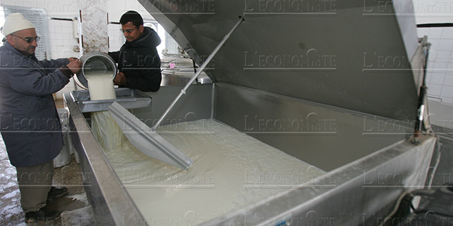 HCP analyzes the dairy sector