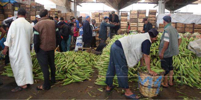 Rabat : Un marché de gros et des abattoirs dans le pipe