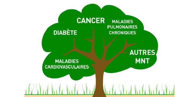 OMS: objectifs pour les maladies non-transmissibles hors de portée
