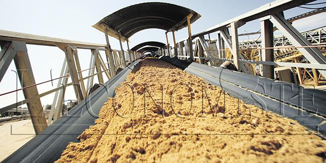 Engrais phosphatés: L'américain Mosaic se plaint des exportations d'OCP