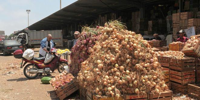 Stockage d'oignons : Un site moderne pour El Hajeb