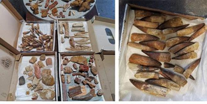 Patrimoine: La Douane saisit 200 kg de pièces interdites à l'exportation