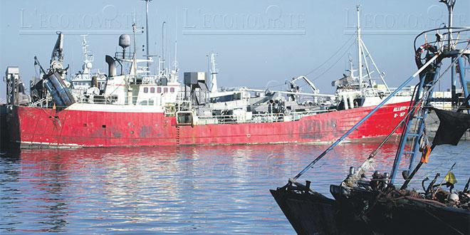 Port de Laâyoune: Les marins soumis aux tests Covid-19