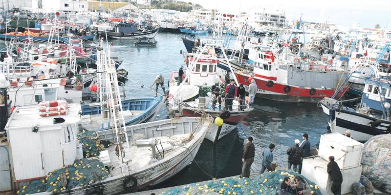 Pêche: Les débarquements fléchissent