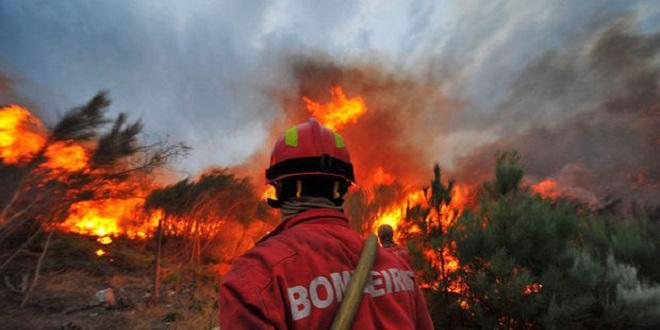 Feux de forêt : Le Portugal veut de l'aide
