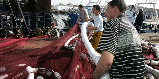 Pêche : Les recettes en léger repli au 1er semestre