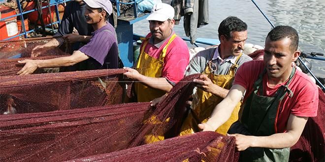 Pêche: Les captures progressent, pas la valeur