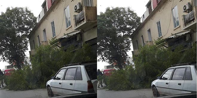 Des rafales de vent et dégâts à Fès