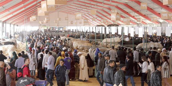 Annulation du SIAM : Impact «très négatif» sur Meknès