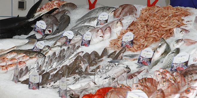 Consommation: Hausse de 7,1% des prix des poissons et fruits de mer