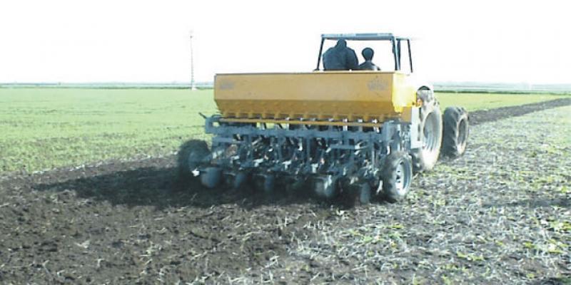 Agriculture: Le semis direct, un accélérateur de performance