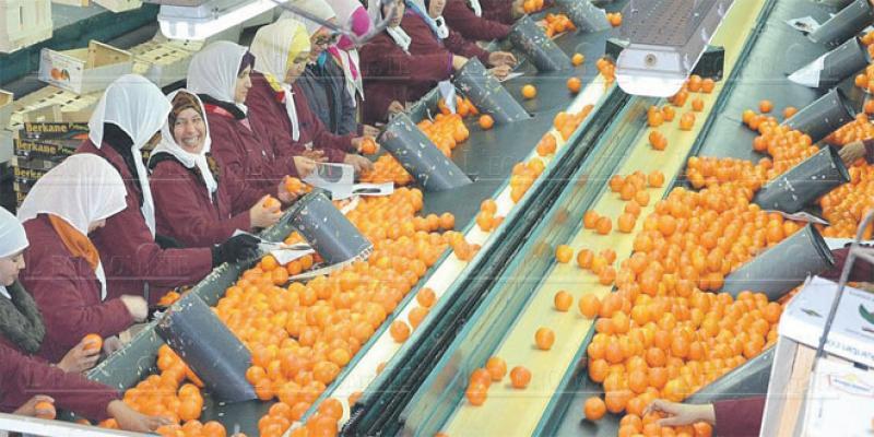 Fruits et légumes: Les foudres du fisc s'abattent sur les opérateurs