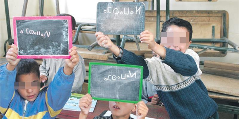 Amazigh à l'école: Impossible à généraliser?