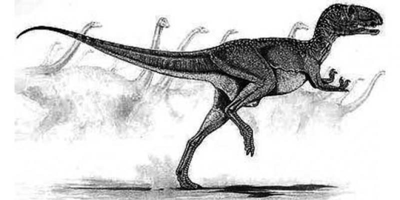 Dinosaures d'Anza: Le site d'empreintes authentifié