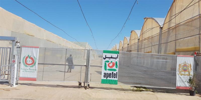 Apefel: Un centre technologique à la pointe du progrès