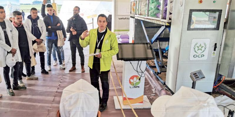Arboriculture: Le dispositif «Al Moutmir» déployé à Meknès