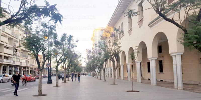 Oujda rénove son plus beau boulevard