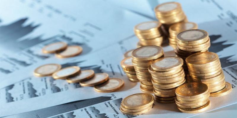 Damane Relance: Les entreprises qui pourraient réussir le test d'éligibilité
