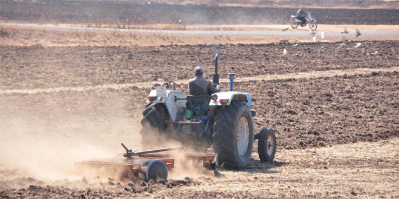 Campagne agricole: «Travailler vite, mais sans précipitation»