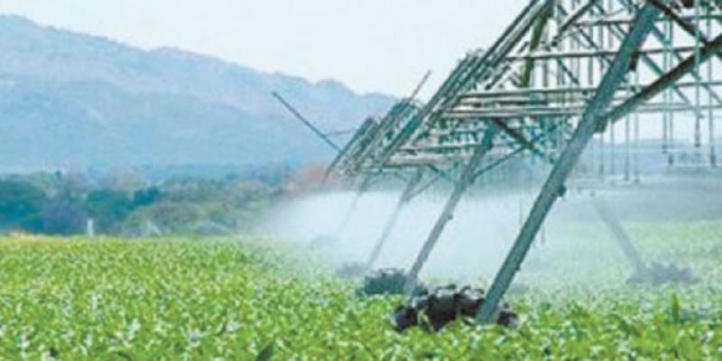 La campagne agricole est rattrapable