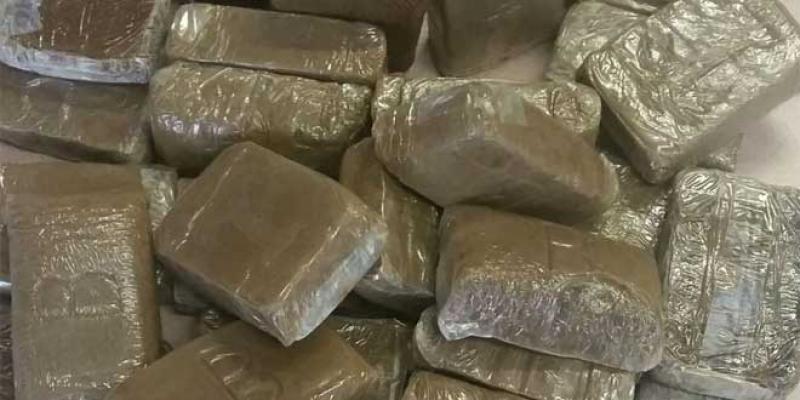Le cannabis indétrônable sur le marché européen de la drogue