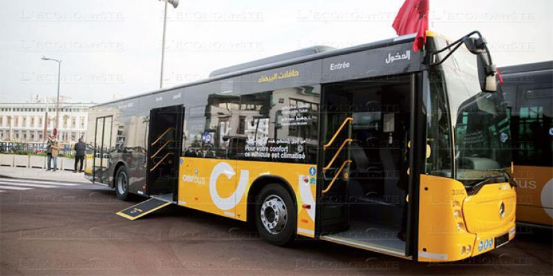 Casablanca dotée d'une nouvelle flotte de bus