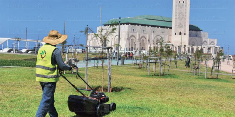 Casablanca: Seconde vie pour les jardins publics?