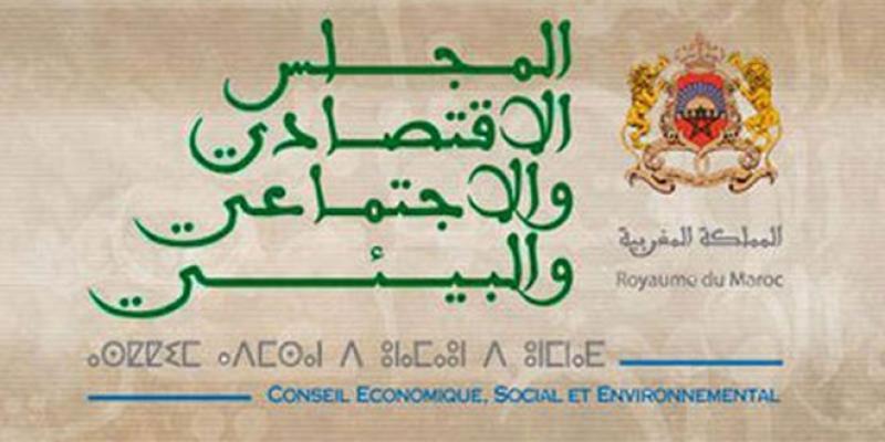 Registre social unifié: Le réquisitoire du CESE