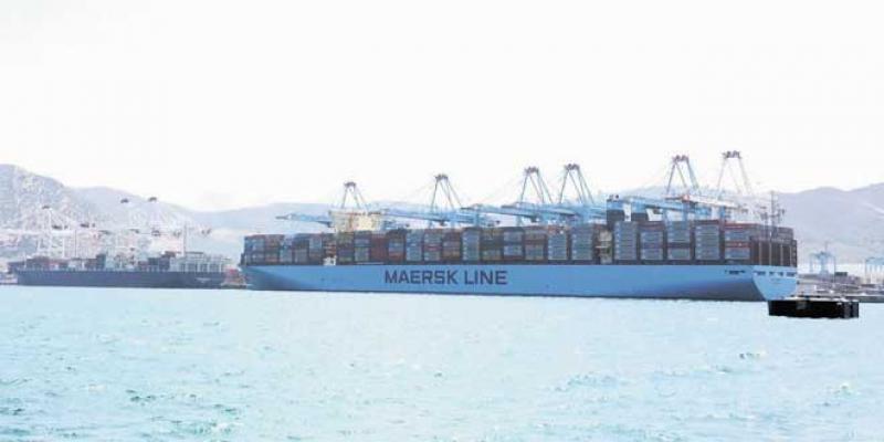TangerMed: Porte-conteneurs, une course qui ne finit jamais
